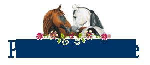 Hobusesõpradele