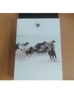 Postkast hobustega / LM