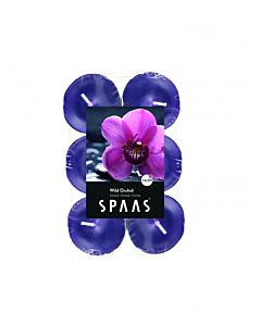 Lõhnastatud teeküünal metsik orhidee 4,5h / 12tk pakis / LM