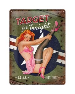 Metallplaat 30x40cm / Target for Tonight