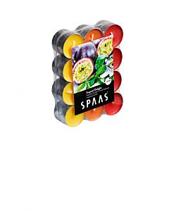 Lõhnastatud teeküünal troopilised viljad 4,5h / 24tk pakis / LM